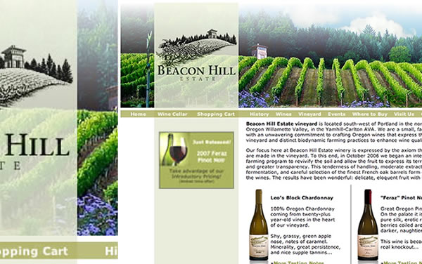 Michigan Web Design - Bar and Winery Web Design